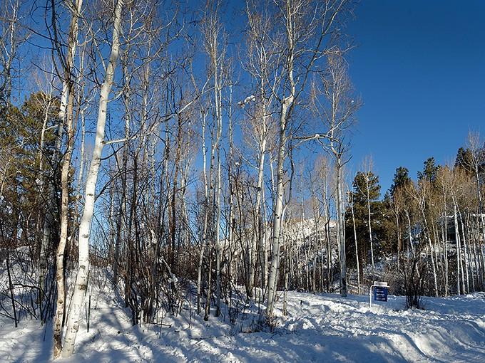Terrain for sales at Aspen View Lot 287 McSkimming Road   Aspen, Colorado 81611 États-Unis