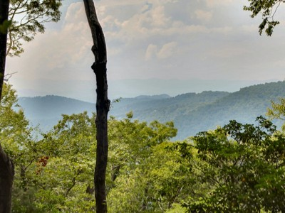 Land for sales at Majestic Home Site on Town Mountain 0 Big Level Drive  Asheville, North Carolina 28804 United States