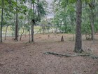 Land for  sales at Palmetto Bluff 391 Old Palmetto Bluff Road   Bluffton, South Carolina 29910 United States