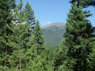 土地,用地 for sales at Lot 5 Ksanka Foothills   Eureka, 蒙大拿州 59917 美国