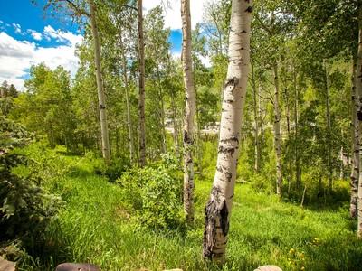 土地 for sales at 2100 Alpine Drive  Vail, コロラド 81657 アメリカ合衆国
