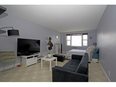 Co-op for sales at Beautiful Renovated Studio 5900 Arlington Avenue 12P  Riverdale, New York 10471 United States
