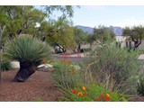 Property Of Charming And Spacious Townhome Tucked In The Heart Of Sun City Vistoso