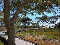 Земля for sales at Lot 39 Vanderbilt Lot 39 Vanderbilt Blvd   Pawleys Island, Южная Каролина 29585 Соединенные Штаты