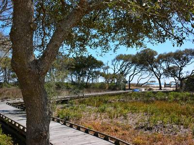 Land for sales at Lot 39 Vanderbilt Lot 39 Vanderbilt Blvd  Pawleys Island, South Carolina 29585 United States