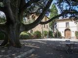 Property Of Splendid Villa between Siena and Arezzo