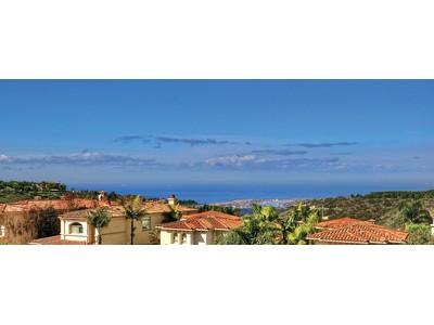 Maison unifamiliale for sales at 19 Silver Pine    Newport Coast, Californie 92657 États-Unis