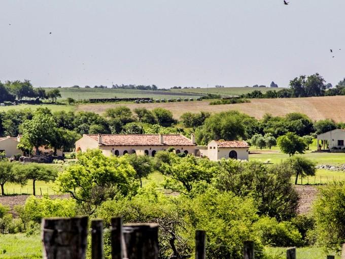 Ferme / Ranch / Plantation for sales at Estancia Tierra Santa Carmelo Colonia Del Sacramento, Colonia 70100 Uruguay
