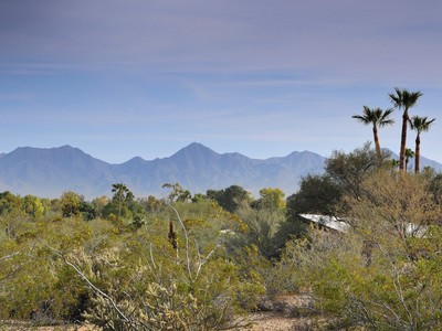 Terreno for sales at Rare 3.63 Acres in Mummy Mtn Park in Paradise Valley 7815 N Ironwood Dr #8 Paradise Valley, Arizona 85253 Stati Uniti