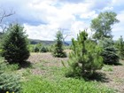 Terreno for sales at Aspen Equestrian Estates 6 Equestrian Way Carbondale, Colorado 81623 Estados Unidos