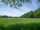 Terreno for  sales at Gorgeous 65 Acre Parcel - West Amwell Township 556 Brunswick Pike Lambertville, New Jersey 08530 United States