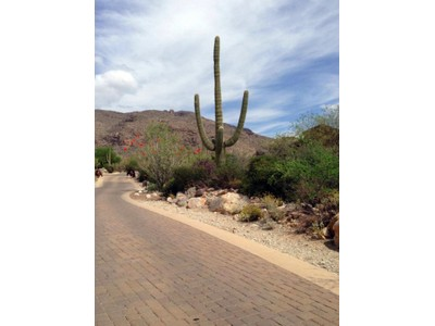 Land for sales at Easy Build 1+ Acre Custom Homesite in Guard-Gated Pima Canyon Estates 7788 N Ancient Indian Drive Tucson, Arizona 85750 United States