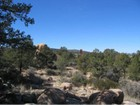 Terreno for sales at Stunning Treed Lot 9850 N Clear Fork Road  Prescott, Arizona 86305 Stati Uniti