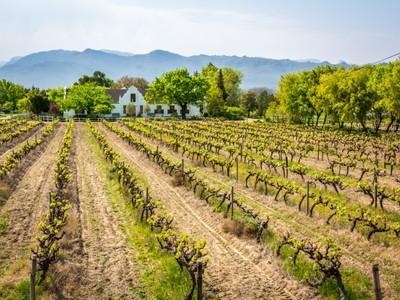 Ферма / ранчо / плантация for sales at Historic Wine Farm in the Cape Winelands  Stellenbosch, Западно-Капская Провинция 7600 Южная Африка