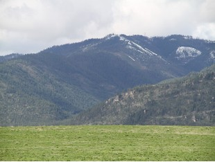 Farm / Ranch / Plantation for sales at 11330 Mocassin Lane  Missoula, Montana 59802 United States