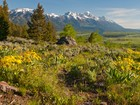 Terrain for sales at Bar BC Ranch 12 Bar BC Ranch Rd  North Jackson Hole, Wyoming 83001 États-Unis