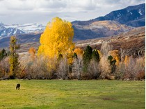 Land for sales at Big Views in Midway 2699 River Meadows Dr Lot 23   Midway, Utah 84049 United States