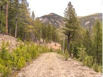 Terreno for sales at 411 Blue Spruce Drive    Evergreen, Colorado 80439 Stati Uniti