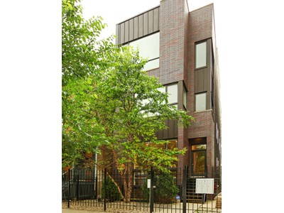 Duplex for sales at Gorgeous Contemporary Duplex Down 1131 W. Addison Unit 1  Chicago, Illinois 60613 United States
