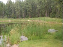 Land for sales at Acreage with pond NHN Rainbow Drive   Bigfork, Montana 59911 United States