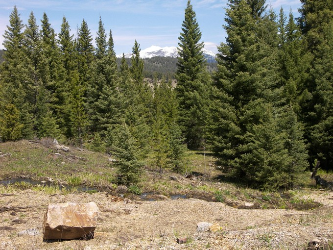 Terreno for sales at Private Towering Pines Acreage Towering Pines Lot 14 Big Sky, Montana 59716 United States