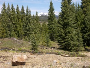 Land for Sales at Private Towering Pines Acreage Towering Pines Lot 14 Big Sky, Montana 59716 United States