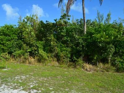 Land for sales at Block 1 Lot 98 & Lot 99 Treasure Cay, Abaco Bahamas