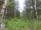 Terreno for sales at Elk Mountain TBD Elk Mountain Drive Redstone, Colorado 81623 Estados Unidos