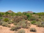 Land for sales at 3+ Acre Golf Course Lot In Guard Gated Community Of Whisper Rock Estates 8464 E Whisper Rock Trail #107 Scottsdale, Arizona 85266 United States