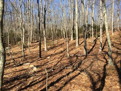 Land for sales at Residential Building Lots 0West Main Street  Niantic, Connecticut 06333 United States