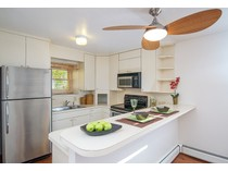 Maison de Ville for sales at Aspen Townhouse 108 W. Hyman Avenue Unit 7   Aspen, Colorado 81611 États-Unis