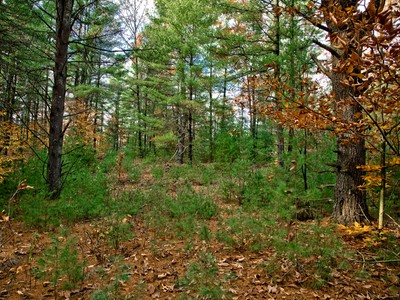 Land for sales at Louden Ridge Kendrick Hill Road Lot 12 Saratoga Springs, New York 12866 Vereinigte Staaten