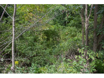 Land for sales at The Preserve at Old Saratoga 0 Old Saratoga Rd.  Gansevoort, New York 12831 Vereinigte Staaten
