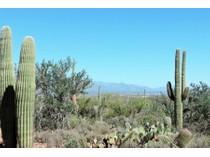 地產 for sales at Amazing Homesite With Breathtaking Panoramic Views 3975 N Avenida Dos Vistas   Tucson, 亞利桑那州 85745 美國