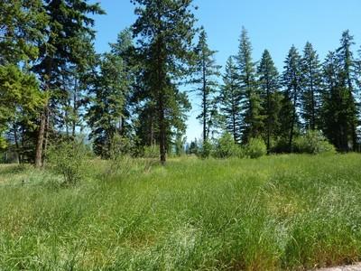 地產 for sales at Glacier Ranch 202 Soaring Pines Trail Lot 61  Kalispell, 蒙大拿州 59901 美國