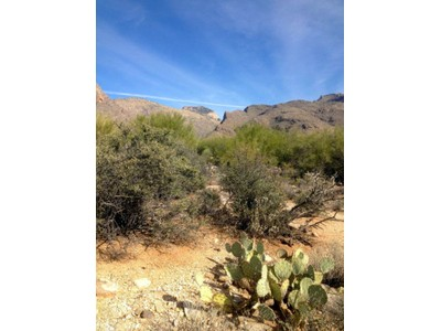 Land for sales at Pima Canyon Estates 1848 E Desert Garden Drive Tucson, Arizona 85718 United States