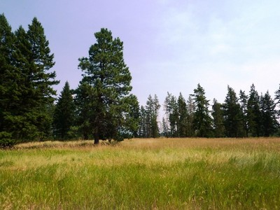 地產 for sales at Glacier Ranch 355 Soaring Pines Lot 94  Kalispell, 蒙大拿州 59901 美國