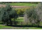 Landgut / Bauernhof / Plantage for sales at 1082 Capra Way  Fallbrook, Kalifornien 92028 Vereinigte Staaten
