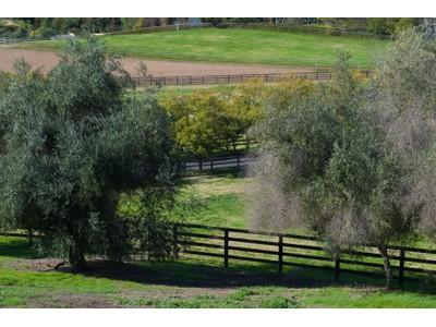 Ferme / Ranch / Plantation for sales at 1082 Capra Way  Fallbrook, Californie 92028 États-Unis