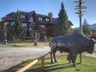 农场 / 牧场 / 种植园 for  sales at 81130 Ranch Road E Calgary, 阿尔伯塔 加拿大