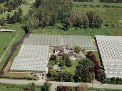Nông trại / Trang trại / Vườn for sales at Special Greens Greenhouses and Farmhouse 13516 Rippington Road Pitt Meadows, British Columbia V3Y1Z1 Canada