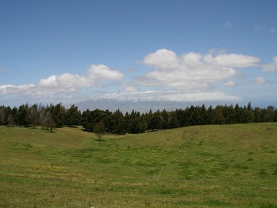 Land for sales at A Legacy Ranch on the Island of Maui! 15640 Haleakala Highway Kula, Hawaii 96790 United States