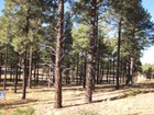 Land for sales at Gorgeous Lot in the Beautiful Flagstaff Ranch 3755 S Bridle Path  Flagstaff, Arizona 86005 United States