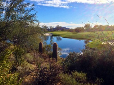 Land for sales at Fabulous Views from Custom Homesite in Estancia 27122 N 103rd St #186 Scottsdale, Arizona 85262 United States