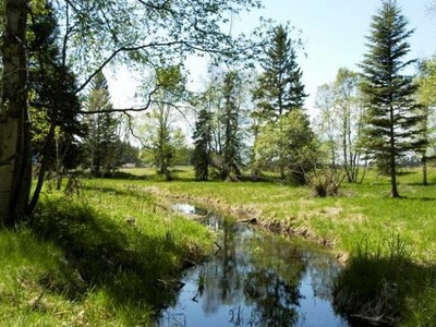 地產 for sales at Glacier Ranch 233 Soaring Pines Trail Lot 59 Kalispell, 蒙大拿州 59901 美國