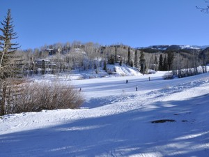 Additional photo for property listing at Timberline  Snowmass Village, Colorado 81615 United States