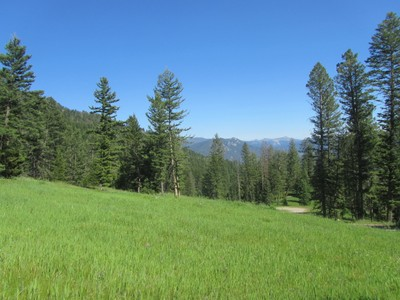 Land for sales at Unique Meadow Village 40 Acres Upper Chief Joseph Trail Big Sky, Montana 59716 United States