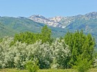 Terreno for sales at Great View Lots in the Heart of Midway 373 East 300 North Midway, Utah 84049 Stati Uniti