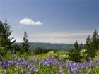 Maison unifamiliale for  sales at Sky River Ridge 14430 176th Place SE Snohomish, Washington 98290 États-Unis