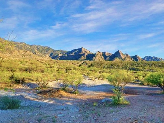 Земля for sales at Stunning Homesites Located Near the end of the Line on Golder Ranch 5190 E Golder Ranch Dr #3 Tucson, Аризона 85739 Соединенные Штаты